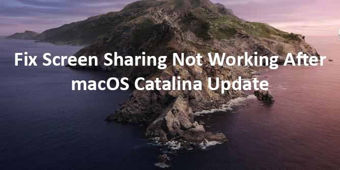 Fix Screen Sharing Not Working After macOS Catalina Update